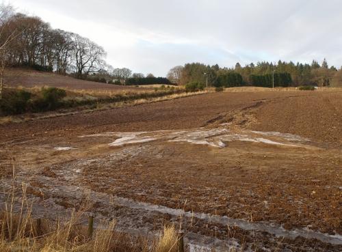 Soil erosion in a field