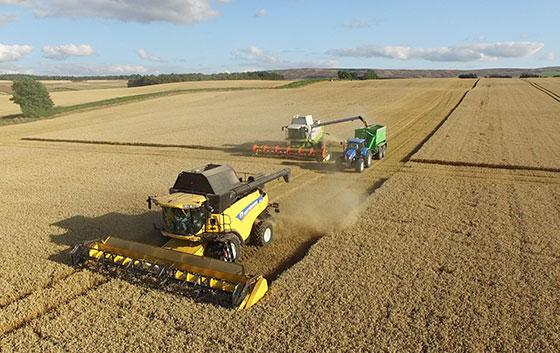 Image showing two agricultural combines harvesting an arable crop
